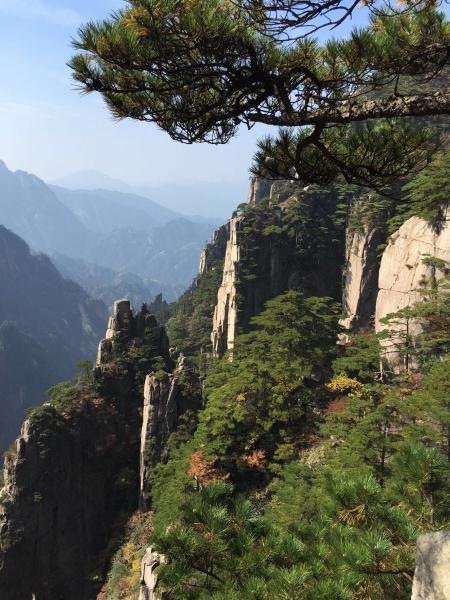 中国旅行证报户口